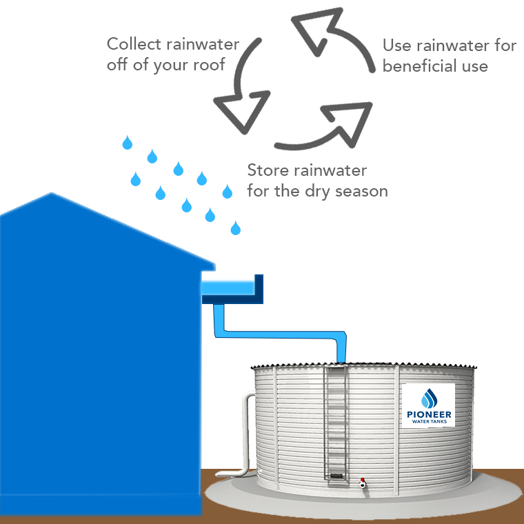 The basics of rainwater harvesting