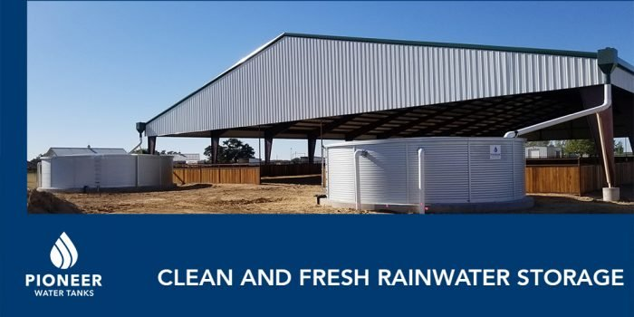 Can You Drink Rainwater? Safely Store Rainwater as a Potable Drinking Water Source